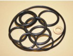 RCD/P&P Wet & Dry Sump O-Ring Kit (2600-0032O)